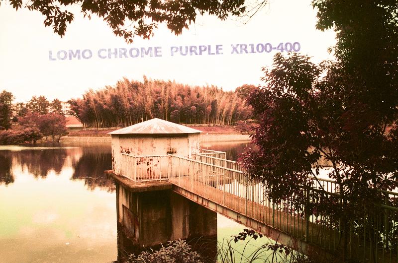ロモグラフィ パープル レビュー カラー写真創成期のような写り